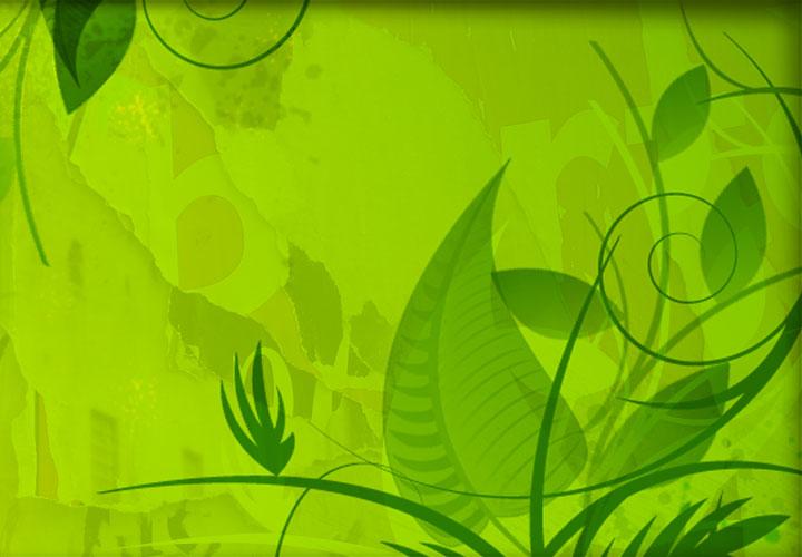 Grafikdesign gestaltung von printmedien layout design for Frankfurt grafikdesign